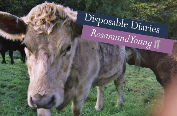 Disposable Diaries: Rosamund Young