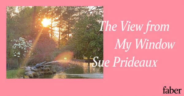 The View from My Window | Sue Prideaux