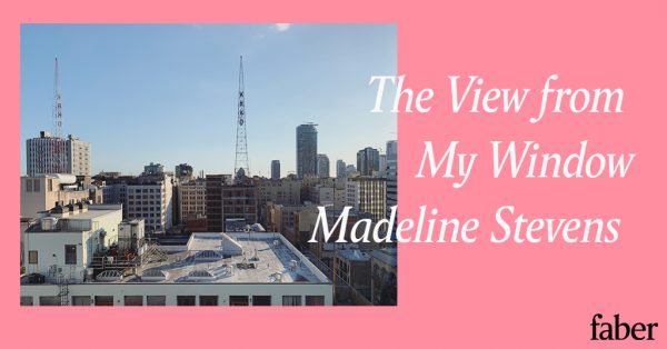 The View from My Window | Madeline Stevens