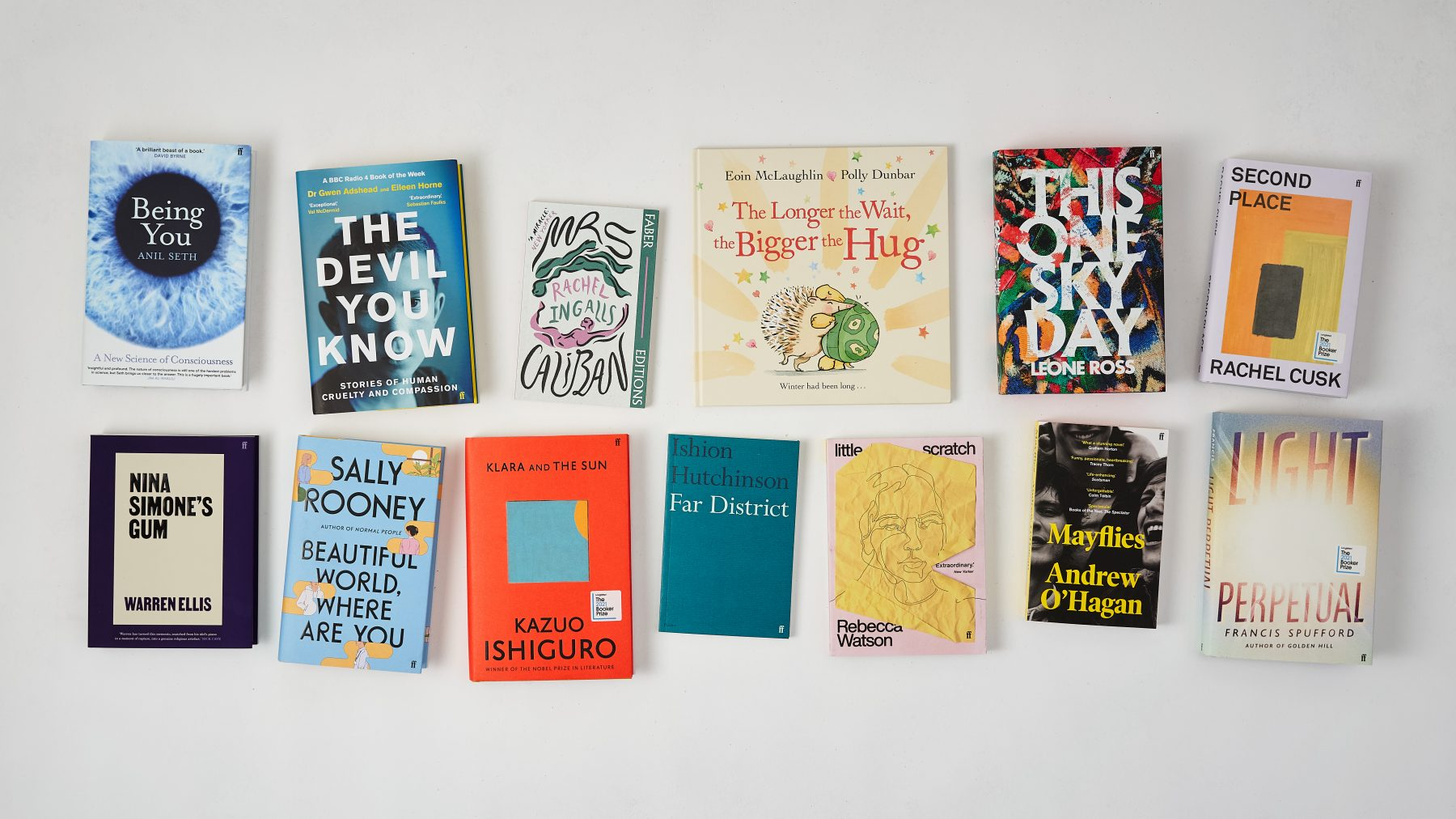 Image of a range of new titles including Mayflies, Second Place, Light Perpetual and Klara and the Sun